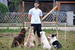 Florian Vogel - Hundetrainer
